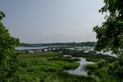 Doles salas dabas parks IV
