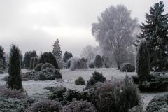 NBD ziemā